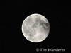 Full Moon. Killarney. Sat 14.06.14