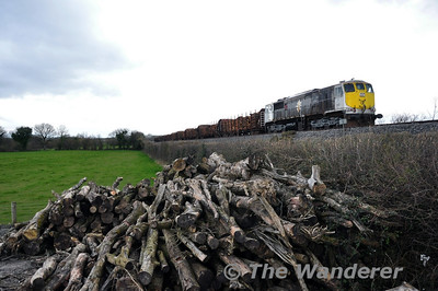 The Timber train passes a stack of Timber. 083 is pictured at Killinure between Portarlington & Monastervin with the 1105 Ballina - Waterford Timber. Mon 17.03.14