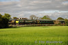 234 passes Portarlington with the 1800 Heuston - Cork. Wed 07.05.14