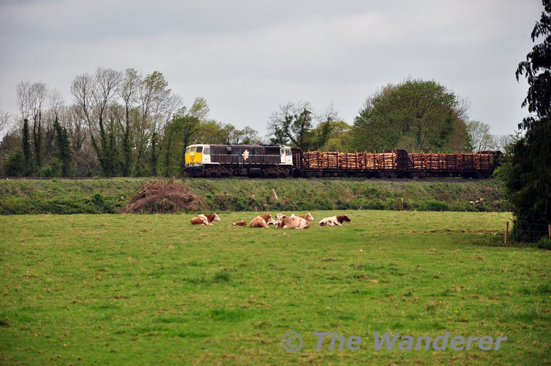 072 arrives at Portarlington with the 1105 Westport - Waterford Timber.  Mon 05.04.14