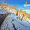 winter landscape wraps around the road