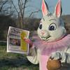 03-31-2014_Easter Bunny_OCN_002