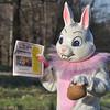 03-31-2014_Easter Bunny_OCN_008
