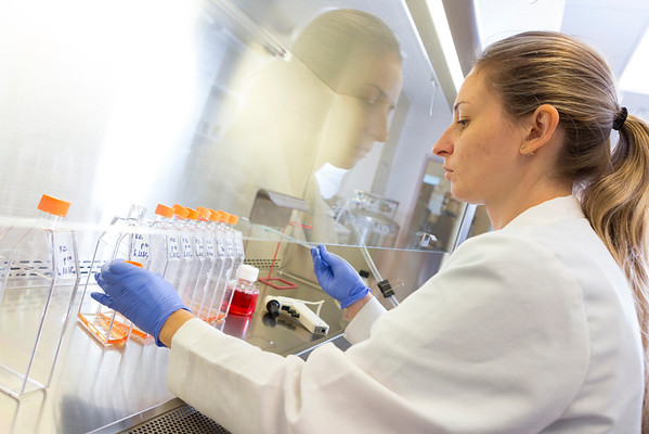 052014_Stem Cell Research Lab