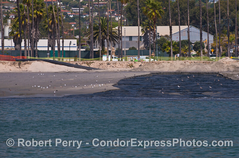 This is the other end of the pipe east of East Beach that transport the sand and sediments being dredged out of Santa Barbara Harbor.