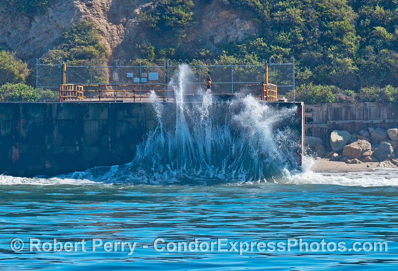A wave crashes against the sea wall at Elwood