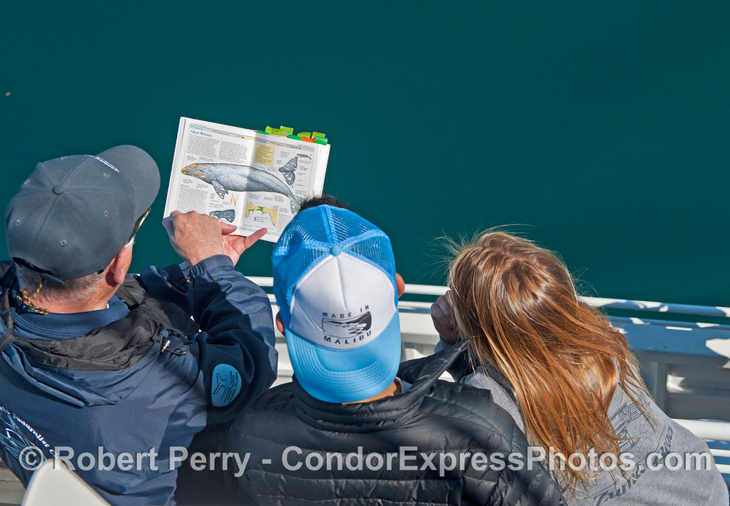 CINC maestro Hal watches gray whales and instructs Malibu High biology students in the finer details.