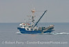 A commercial squid fishing vessel - the purse seinter Pacific Pursuit