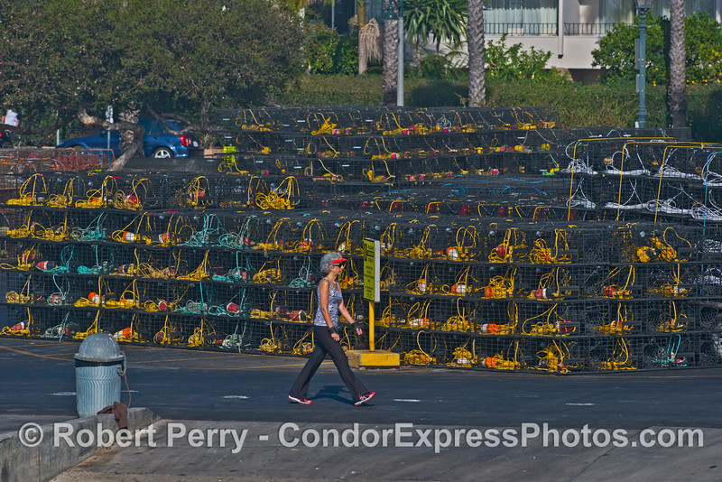 California spiny lobster traps - piled up high and wide near the launch ramp
