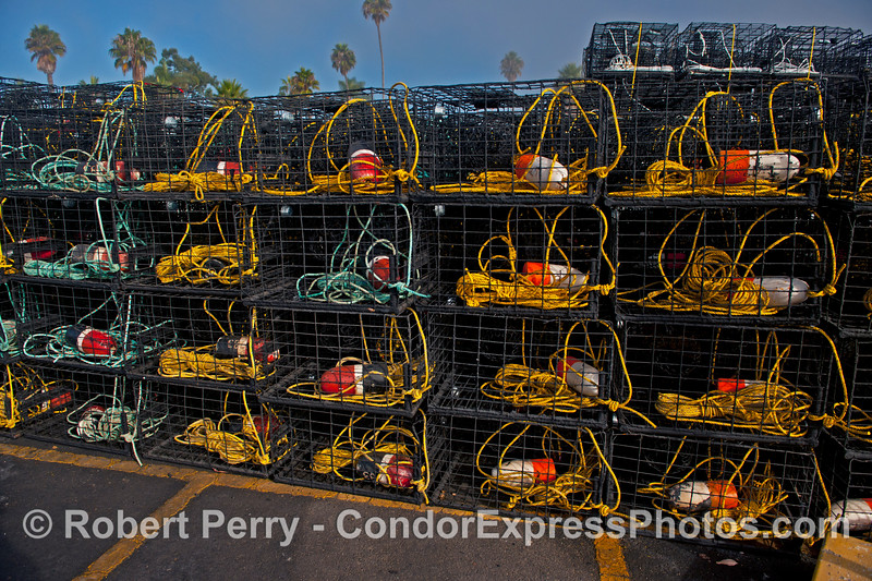 California spiny lobster traps - yellow and turquoise