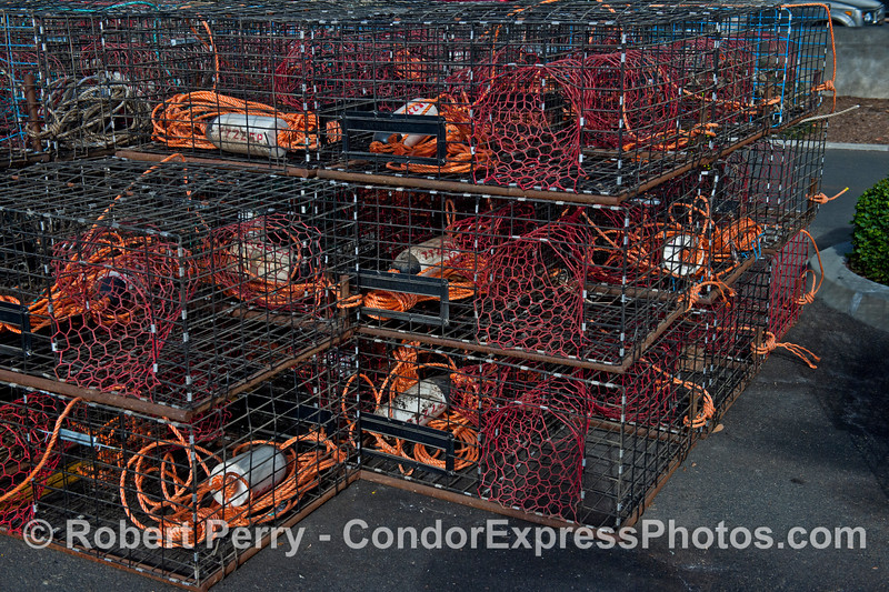 California spiny lobster traps - orange, red and white