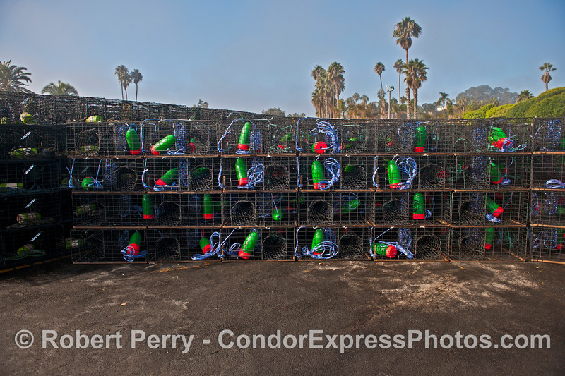 California spiny lobster traps - big stack of blue, green and red