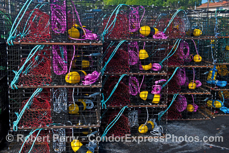 California spiny lobster traps - magenta, blue, red and yellow with black