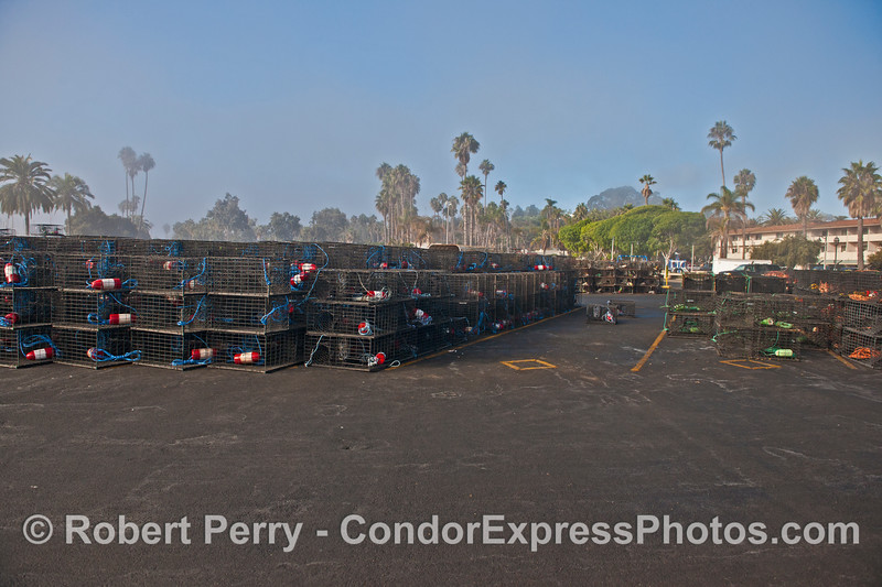The West Beach launch ramp parking lot is full of California spiny lobster traps