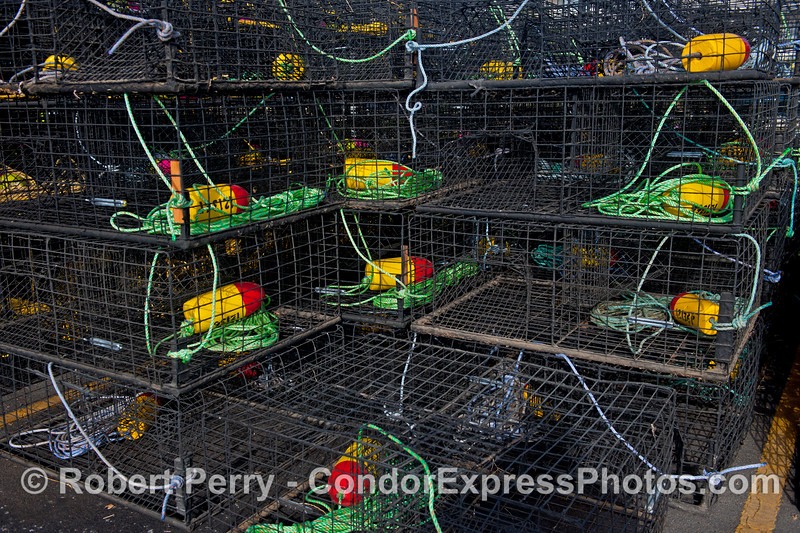 California spiny lobster traps - lime green, red and yellow