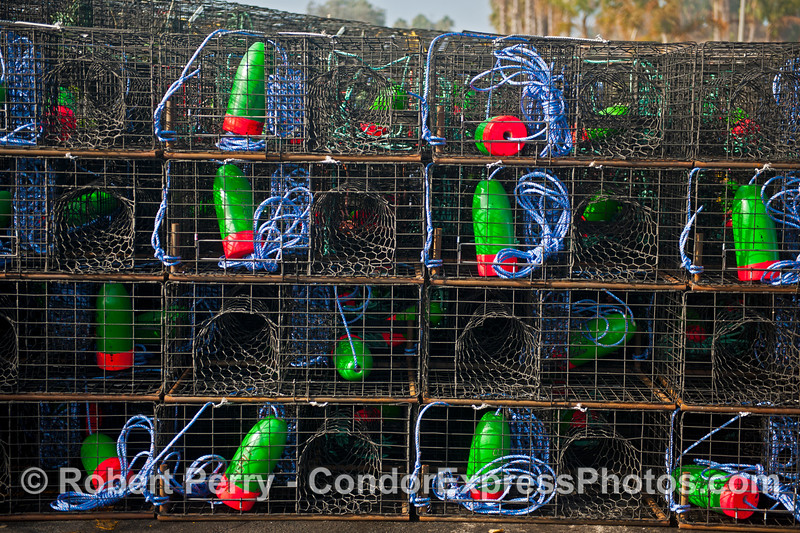 California spiny lobster traps - blue, green and red