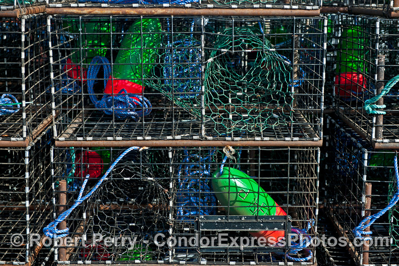 California spiny lobster traps - green, red and blue