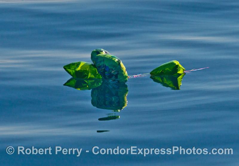 Dangerous mylar balloon trash also ruins the view