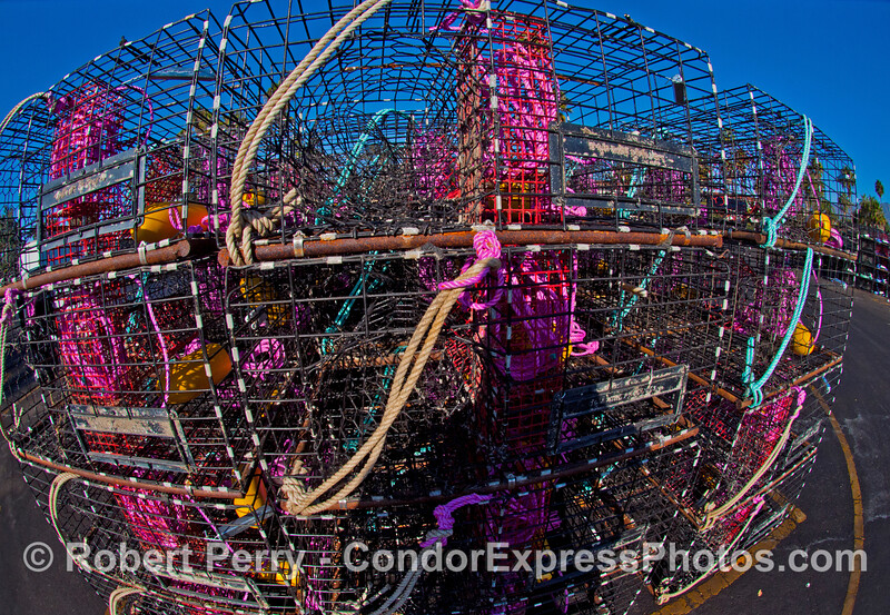 Lobster traps near the launch ramp - Santa Barbara Harbor