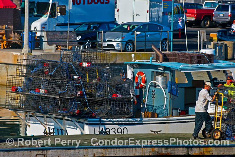 "Commercial fishing vessel ""Aelita"" loads lobster traps - Santa Barbara Harbor"