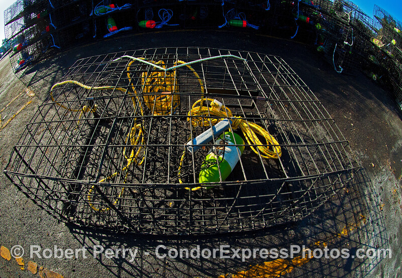 A lobster trap near the launch ramp - Santa Barbara Harbor