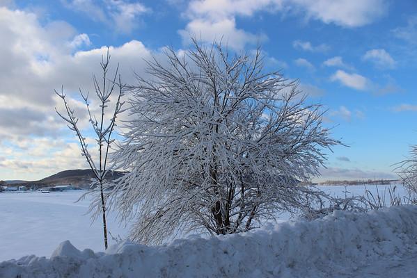 Pine Island, NY 2/14/14