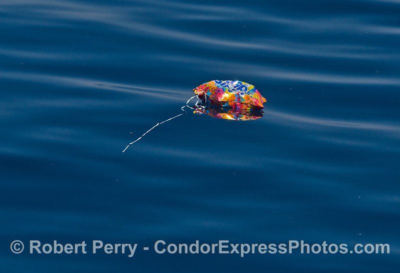 Balloon debris - red and orange