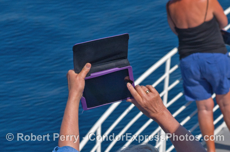 iPad photogaphy - I worry about one going into the drink without a lanyard