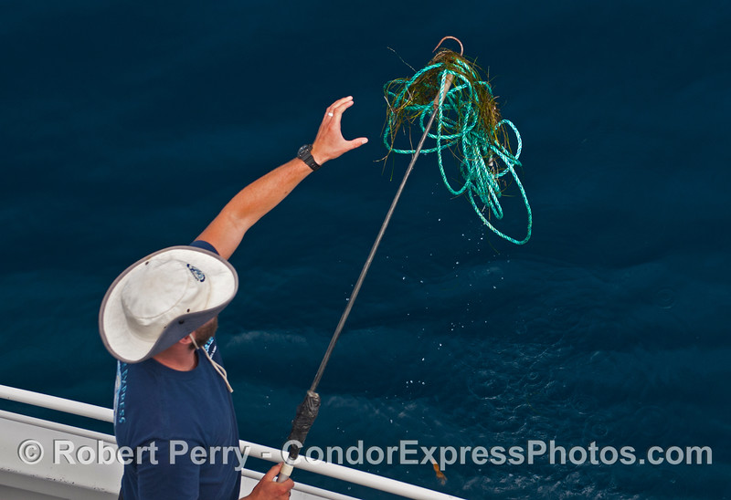Deckhand Augie cleans the seas - Part 4