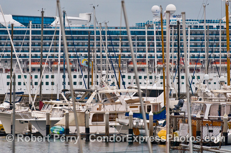 "The cruise ship ""Golden Princess"" obscures the view just outside of Santa Barbara Harbor"