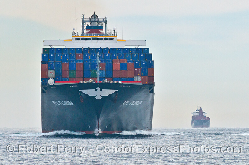 Head-on view of the container ship APL Florida in the northbound Santa Barbara Channel shipping lane
