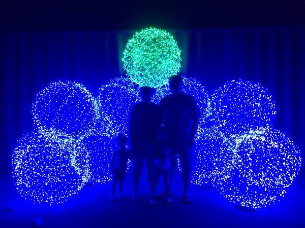 2014-12-27 Governer's House Christmas Lights