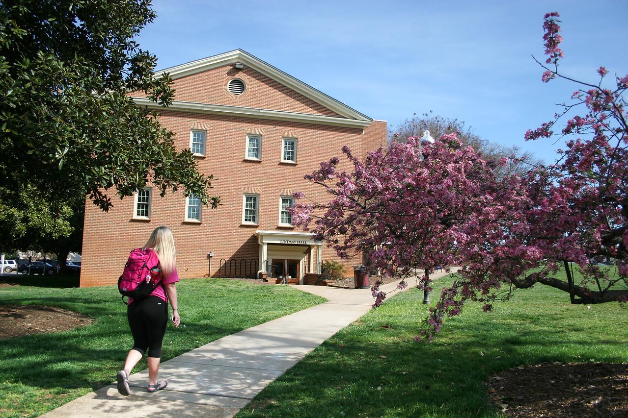 A Gardner-Webb University student walks toward Lindsay Hall on a Spring day.