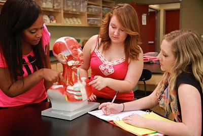 Anatomy Class Lab Spring 2014