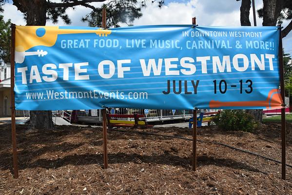 2014 Taste of Westmont