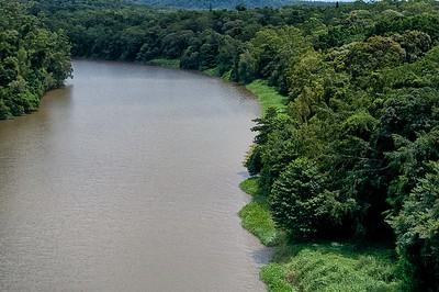 Skyrail  Barron River