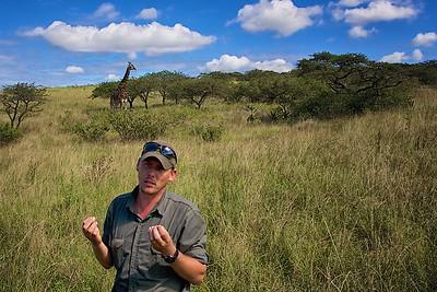 Tala Game Reserve  Giraffe