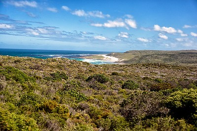 Road to Cape Point