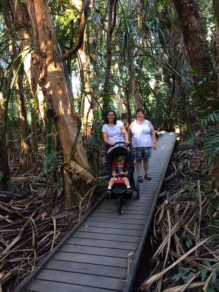 2014-07-05 Cairns Botanical Gardens