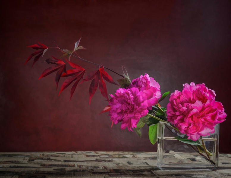 05-08-14 Peonies & Red Maple III