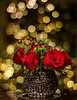 12-21-14 Christmas Flowers with bokeh