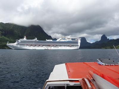 28 Day Pacific Island Cruise