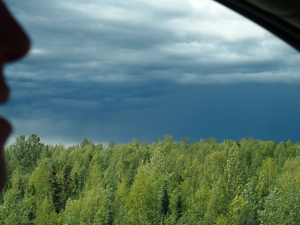 Me thinks it's going to rain.