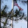 Florida April '14 DSC_4829