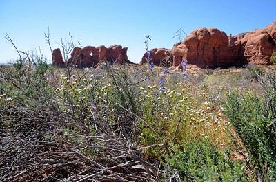 arches_2014_039