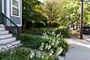 Ellsworth Ave. gardens