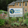 JOED VIERA/STAFF PHOTOGRAPHER-Lockport, NY- Flowers bloom at Imagine Community Gardens on Tuesday, August 12th.