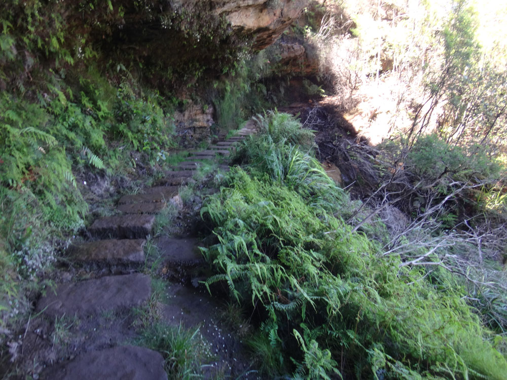 The Undercliff Trail to Wentworth Falls