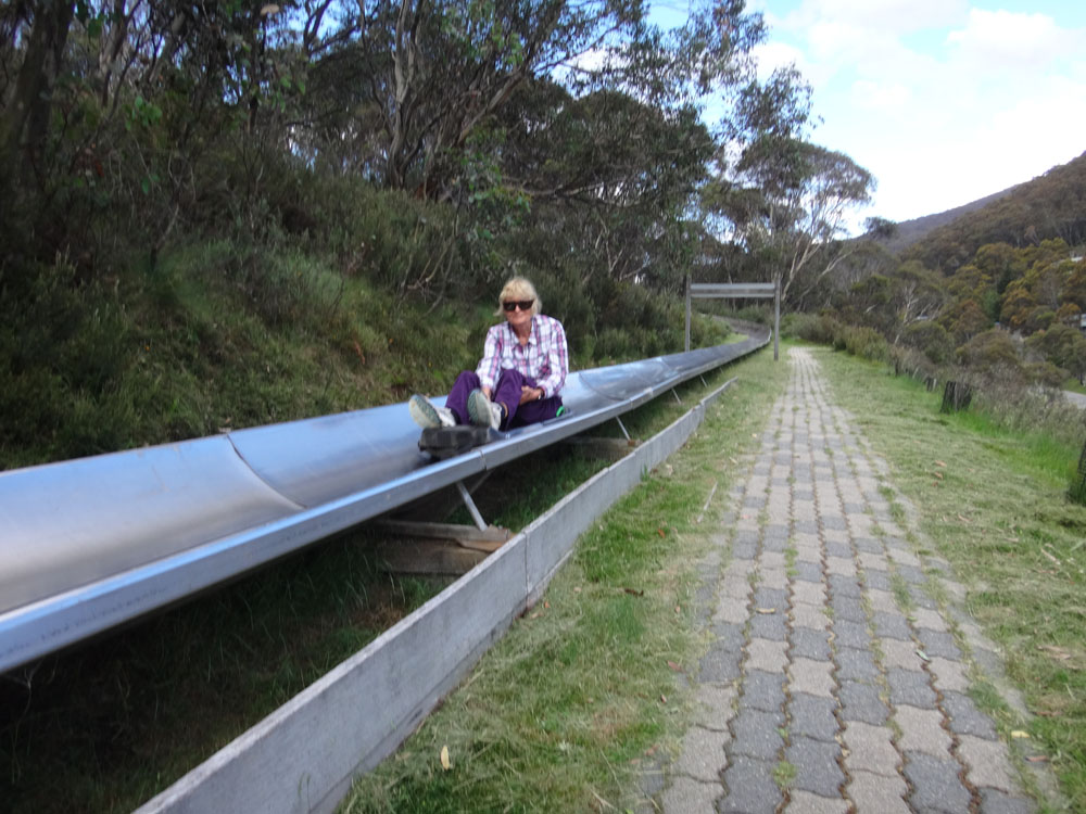 There's also a very long bob sled that hurtles down the mountainside. I couldn't keep Mum off it...! Adventure hound...