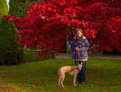 Autumn at Drummond Castle Gardens